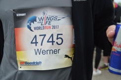 Wings for life 2017